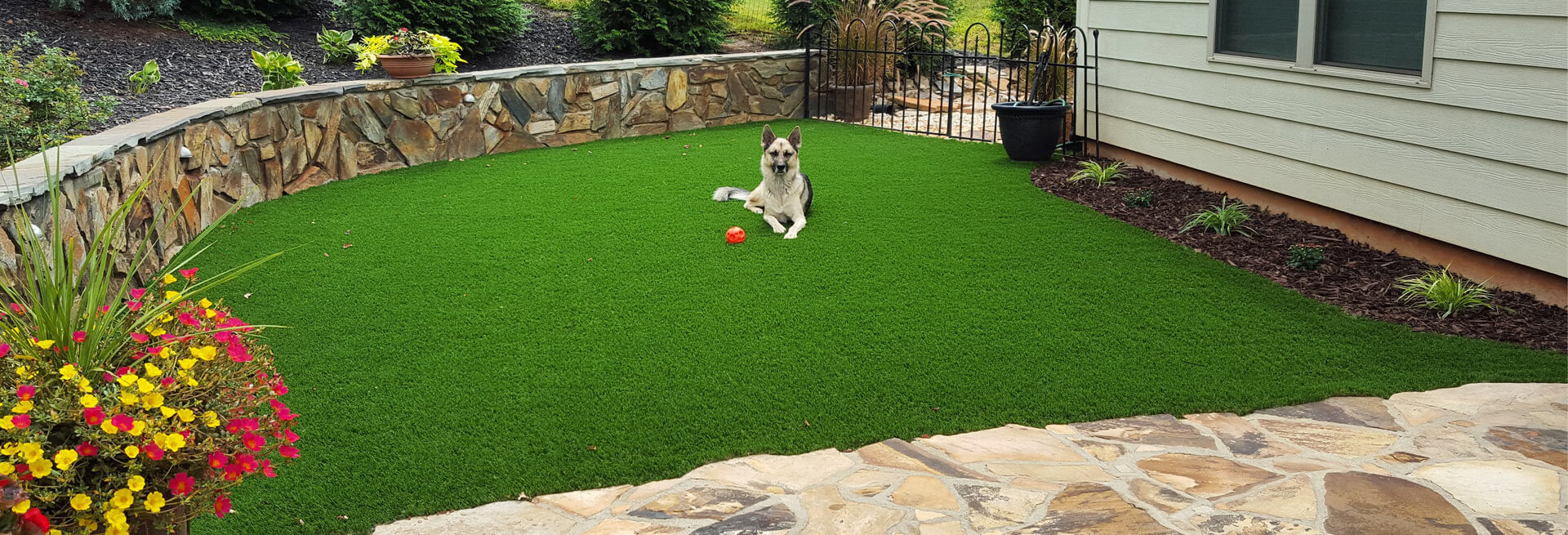 Find the perfect artificial grass product for your space click - Charlotte Nc Artificial Grass Amp Putting Greens Synlawn