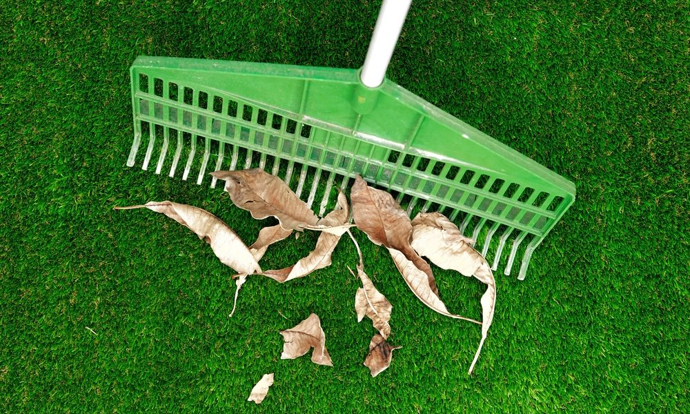 Homeowner rakes their artificial grass as part of proper care and maintenance