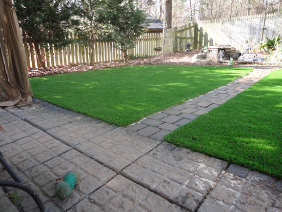 Green lawn in North Carolina backyard