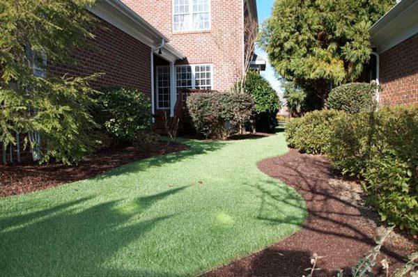 Backyard artificial grass Winston-Salem