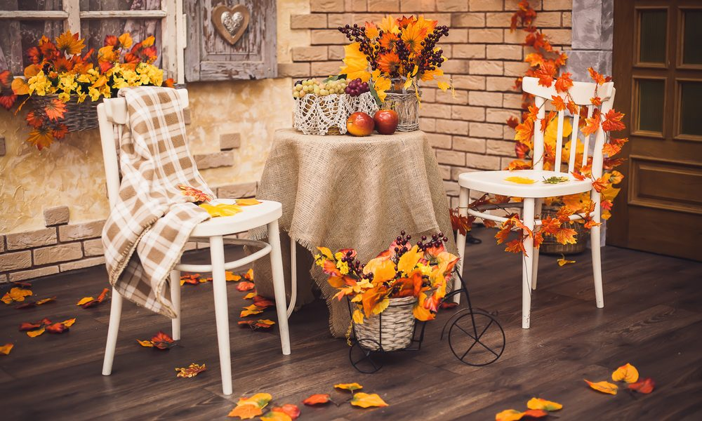 Fall leaves decorate the backyard landscape in North Carolina