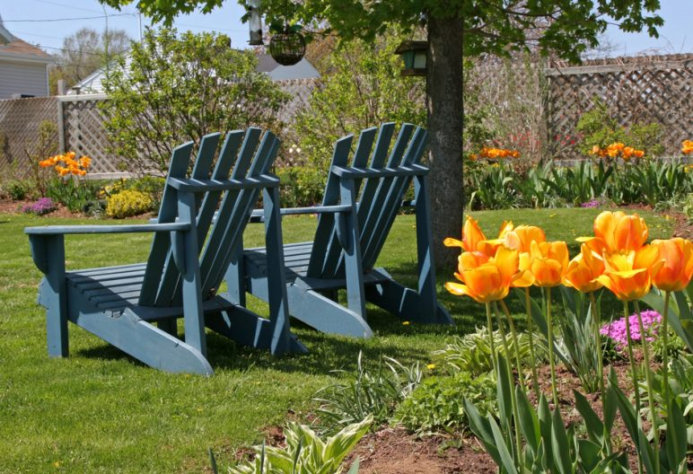 Two Adirondack chairs accent artificial grass in a springtime backyard